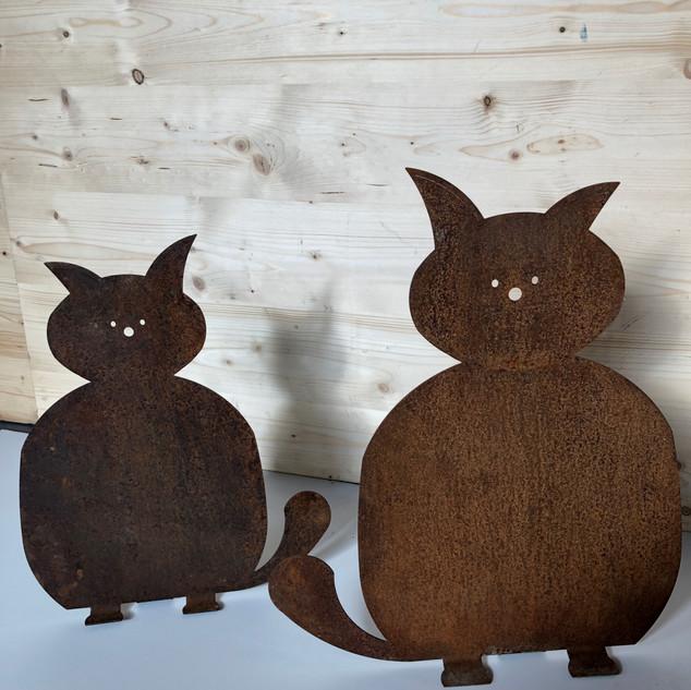 Katzen dick.jpg