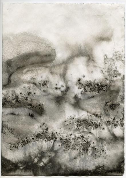 Paysages d'encres © Léa Neuville