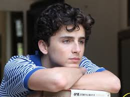 Timothee Chalamet / Call Me By Your Name