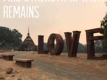 Sonoma Valley Fire Diaries: 10/15/17 (Love)
