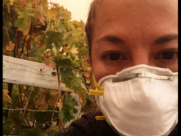 Sonoma Valley Fire Diaries: 10/11/17 (Air)