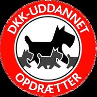Opdræt i Dansk Kennelklub (DKK) af Cavalier King Charles Spaniel.