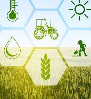 Agriculture-1-788x443.jpg