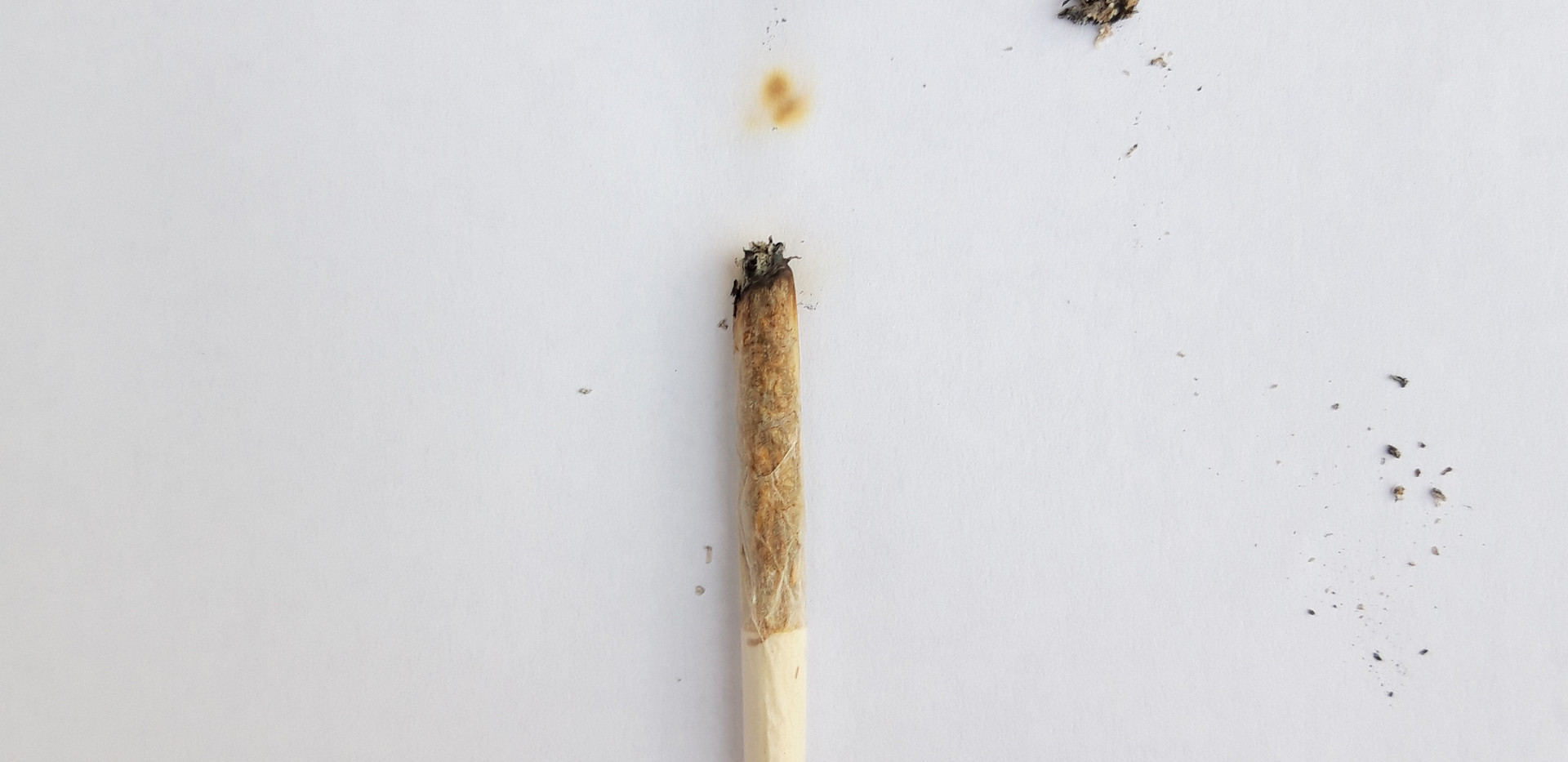 Light up, smoke up and shut the fuck up. Jesús Caballero
