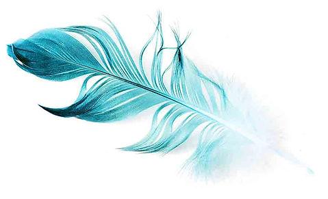 Informationen zu den Workshops Dream of Spirit