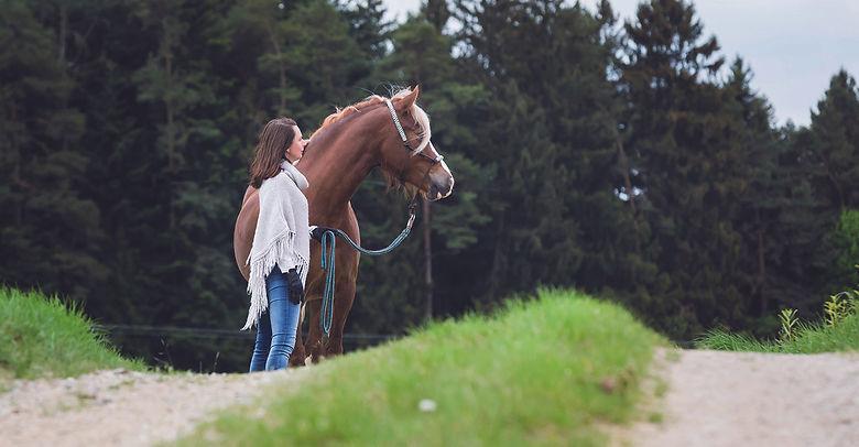 Pferderetreat, Einzelworkshop, Heldenreise, Angela Brückl, Dream of Spirit