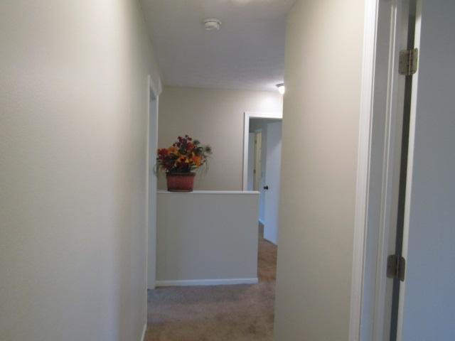 Hallway (stair & primary bedroom view)