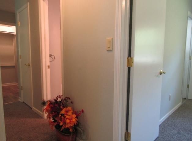 Hall view of master, hall bath, closets