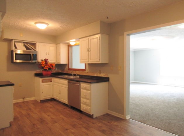 Kitchen with microwave hood and dishwasher.