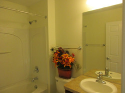 Hall bath has full shower bathroom, towel rack, sink cabinet, mirror.