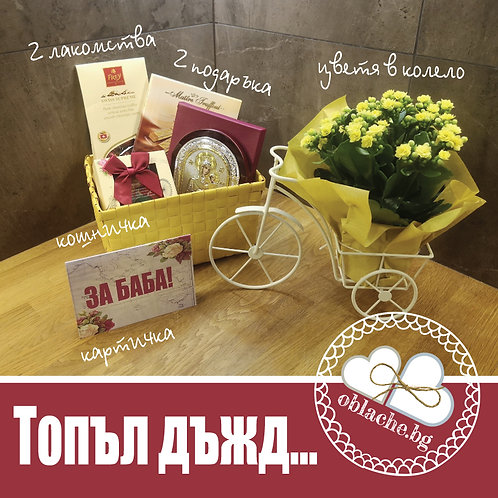 ТОПЪЛ ДЪЖД - 2 лакомства, 2 подаръка и картичка в кош + цветя в колело