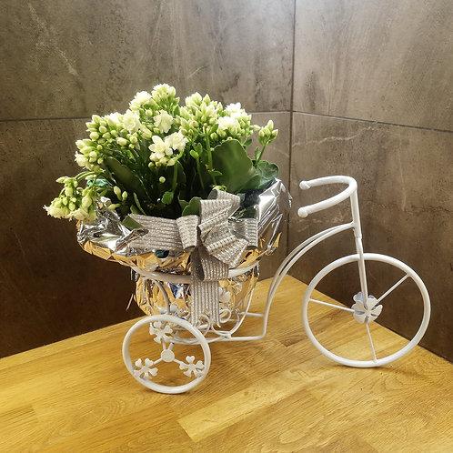 Голямо метално колело със сезонни цветя по Ваш избор