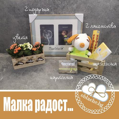 МАЛКА РАДОСТ - 2 лакомства, 2 подаръка, картичка, щайгичка, цветя