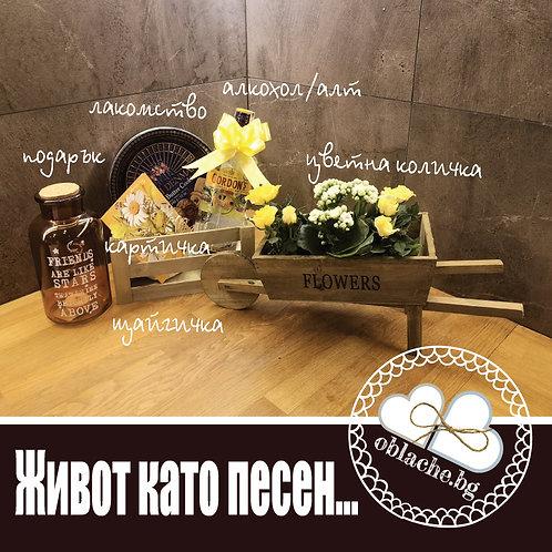 ЖИВОТ КАТО ПЕСЕН - Алкохол по избор, лакомство, подарък, картичка, щайга, цветя