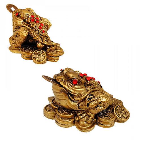 Жаба с паричка за богатство и късмет