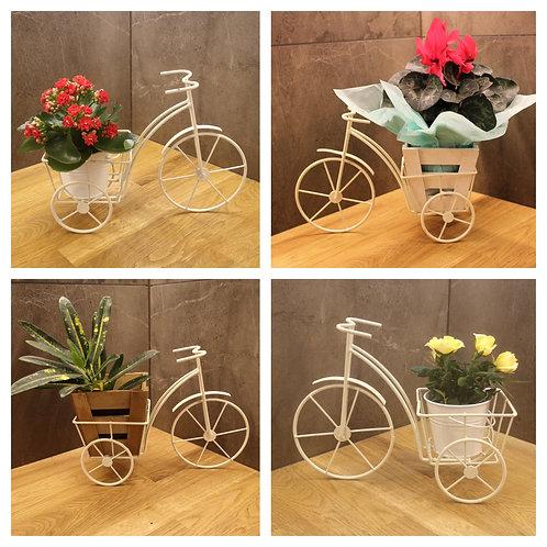 Средно метално колело със сезонно цвете по Ваш избор