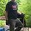 Thumbnail: Make a Shaker Ladderback Chair with David Douyard