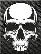 VP-054 Plakette Skull02-Carbon.jpg