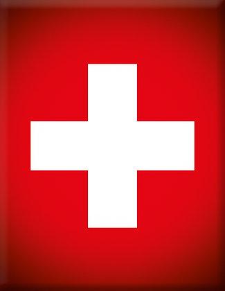 Vespa Emblem Piaggio Kaskade Swiss