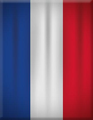 Emblema da França
