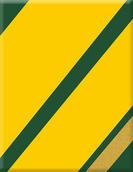 VP-083 Plakette Racing Sixties green-gol