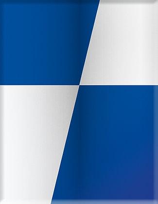Club Crest-Синьо-бяла емблема