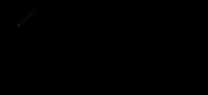 Penang Photo Booth Logo