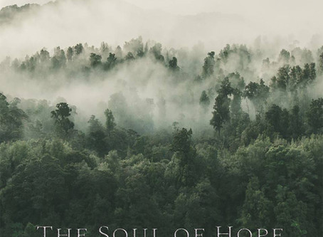 The Soul of Hope