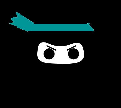 ninja in diamond -final.png