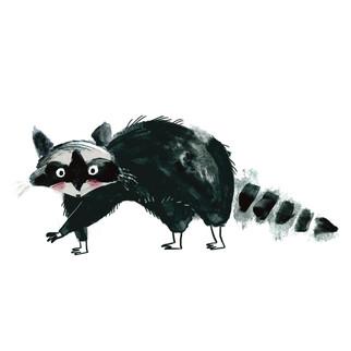 Racoon character