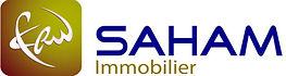 SAHAM-Immobilier.jpg