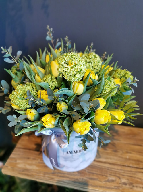 Flower box - tulpju dzeltens