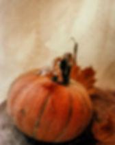 Célébration de l'halloween.jpg