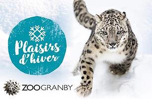 Zoo de Granby l'hiver.jpg