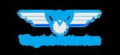 Logo VCR 2017 bluegrey.png
