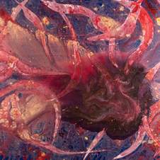 Cosmic Conception