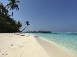 Phantastischer Strand