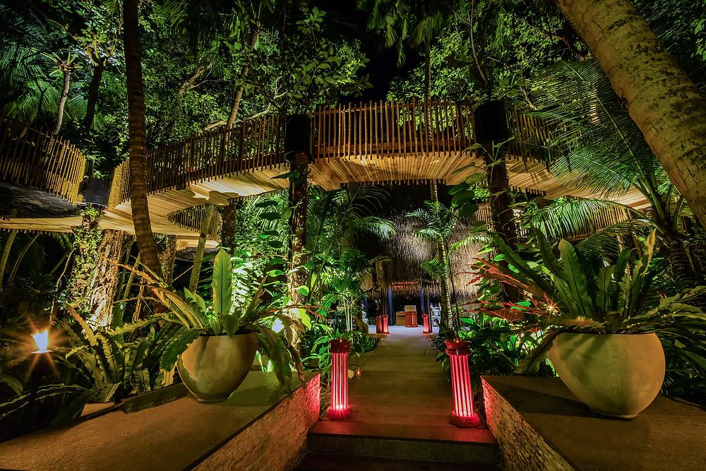 Nest: Dinner im Dschungel-Baumhaus