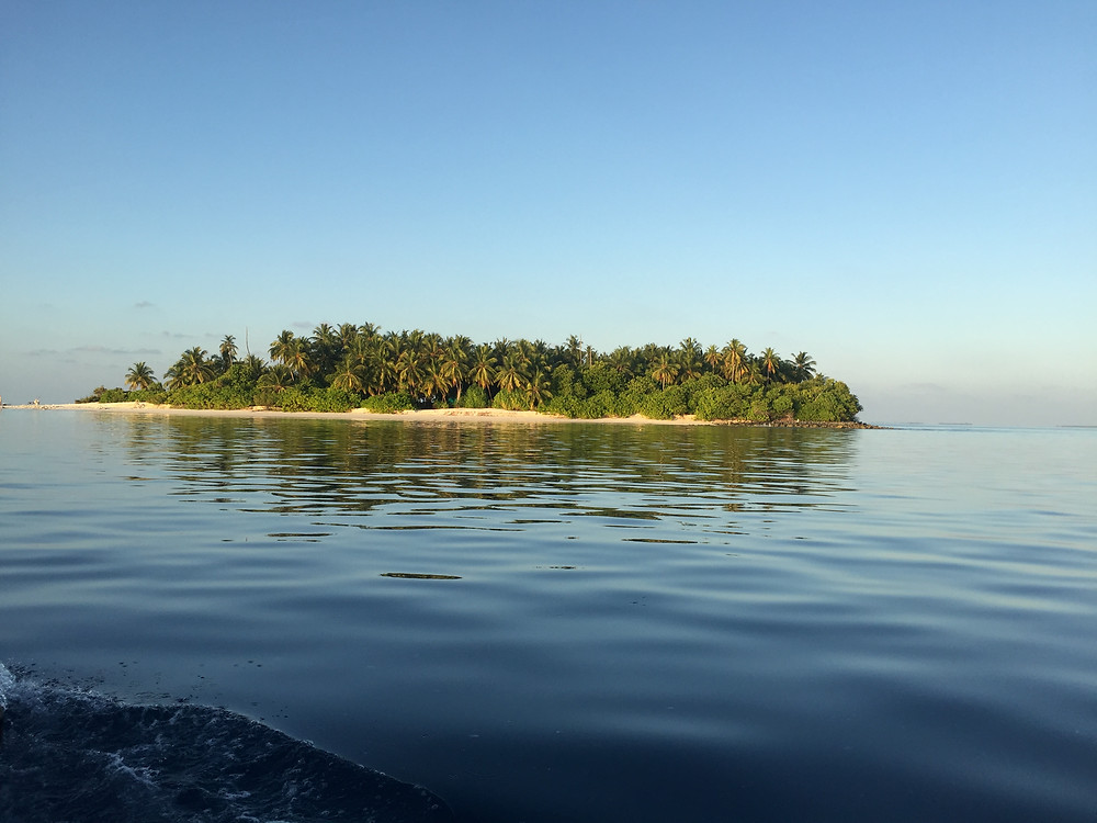 """""""unsere"""" Robinson-Insel"""