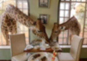 Familien Luxusreise ins Giraffe Manor