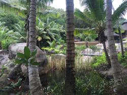 Main Pool auf 3 Ebenen