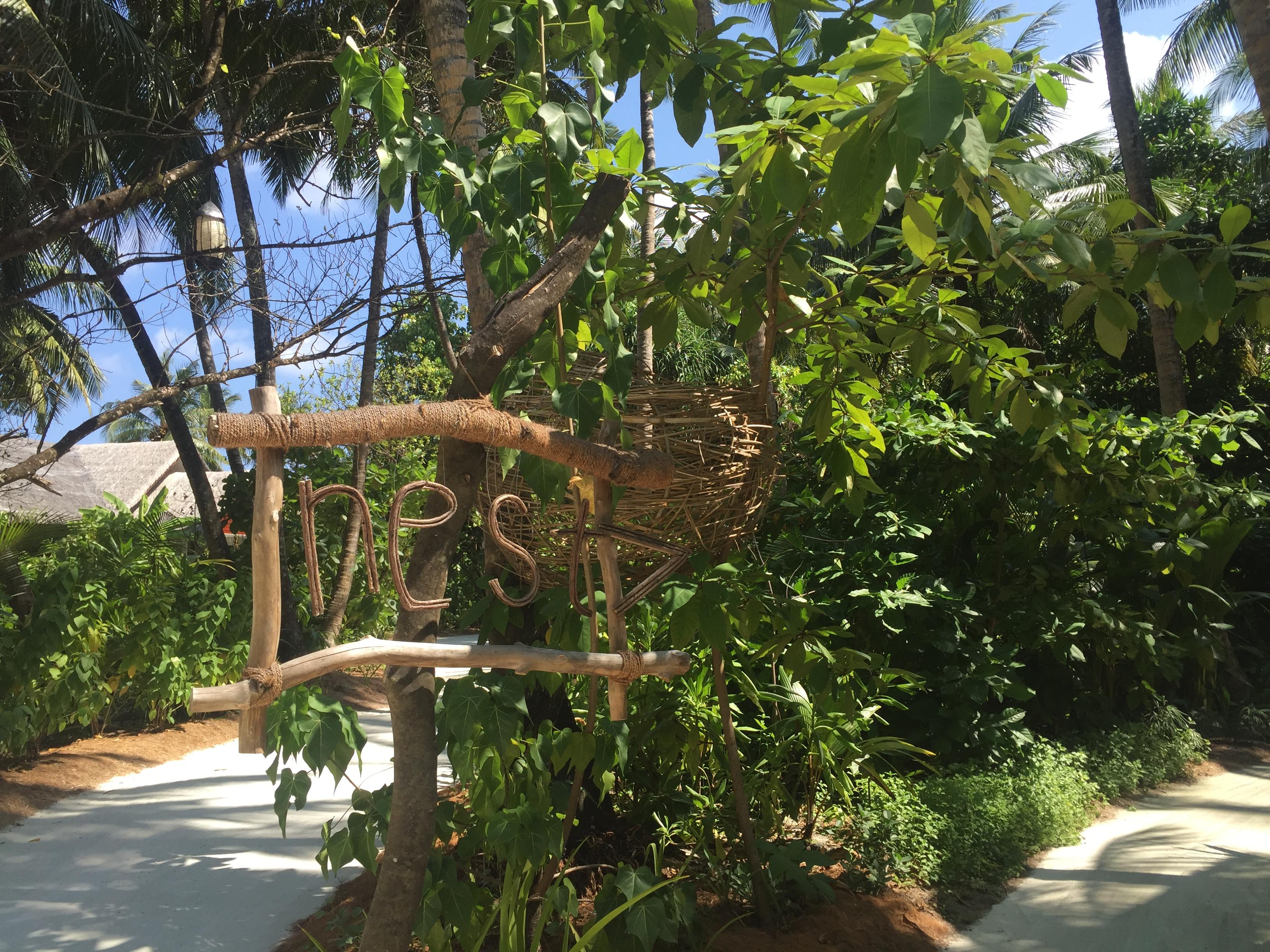 Restaurant Nest