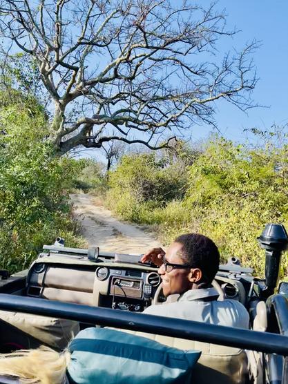 Mwiba Lodge - Tansania
