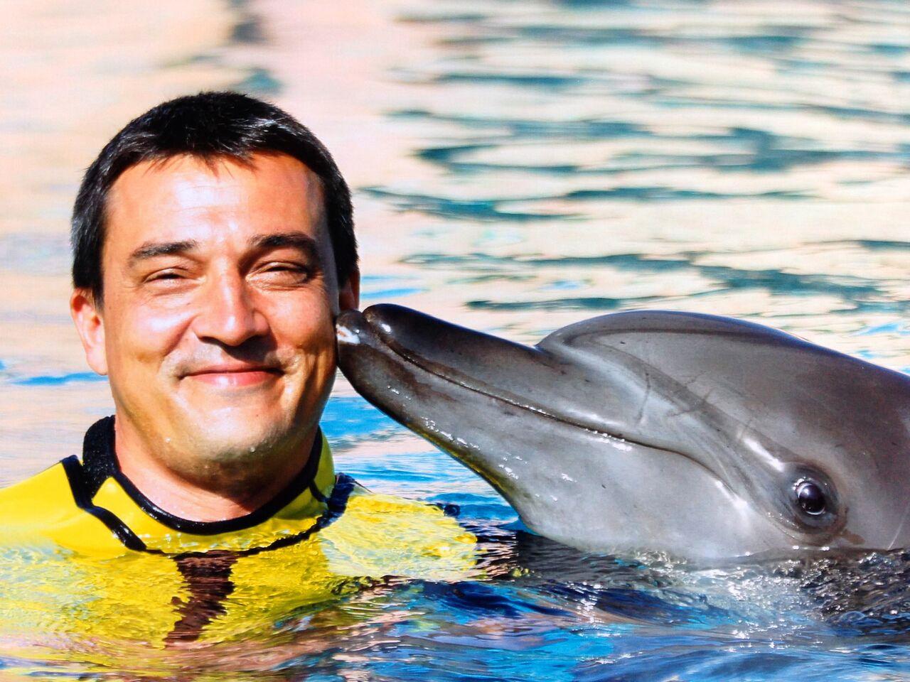 Delfin Kiss