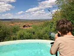 Blick auf Wasserloch vor der Villa