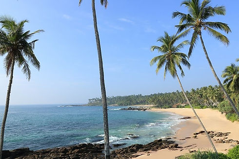Familienluxusreise ins Anantara Peace Haven