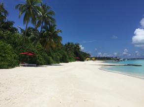 Niyama- Malediven