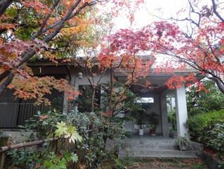 大阪深度旅遊行程之一