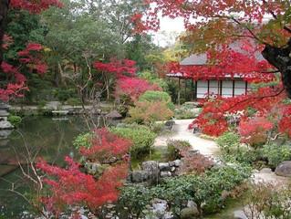 奈良療癒賞楓景點-名勝庭園依水園