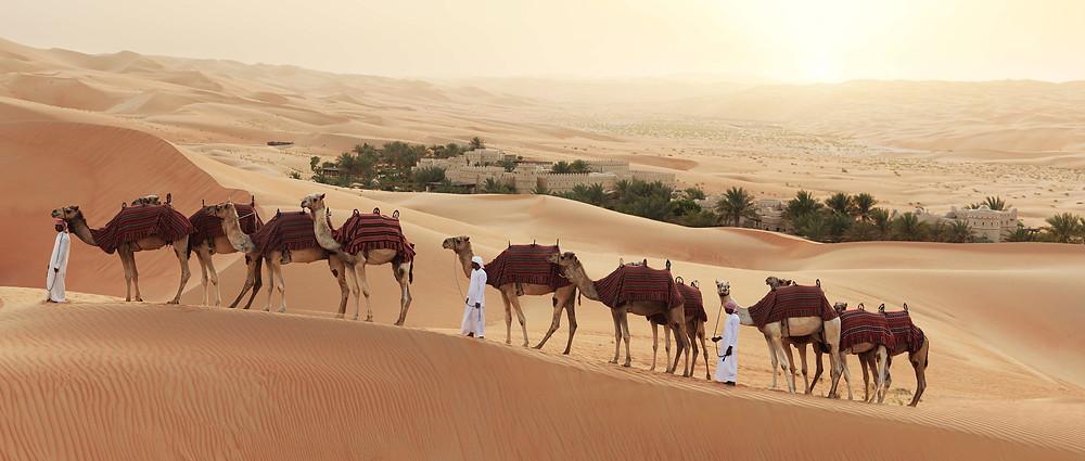 Kamelreiten in der Wüste
